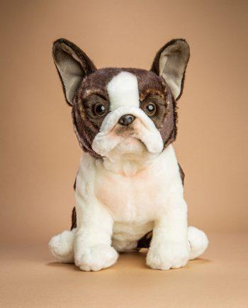 Boston Terrier dog soft toy gift - Send a Cuddly