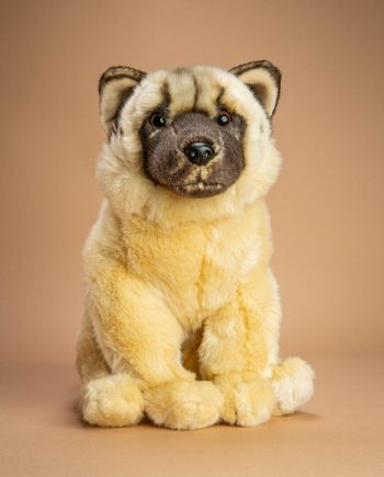 Akita Soft Toy Dog Gift - Send a Cuddly