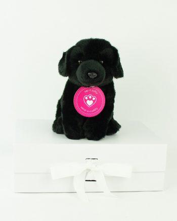 Black Labrador Soft toy