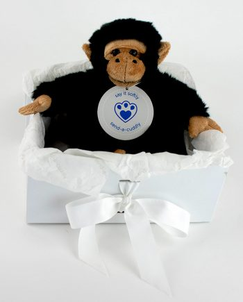 Cheeky Chimp soft toy