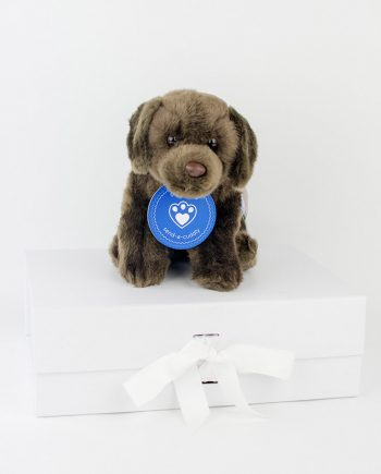Chocolate Labrador Soft Toy
