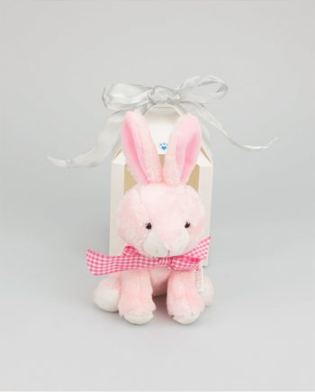 Cookie easter Bunny Gift