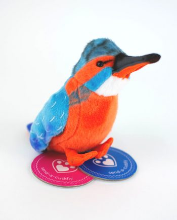 Kingfisher Soft Toy - Send a Cuddly