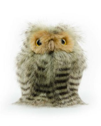 Gorgeous Fluffy Owl Chick