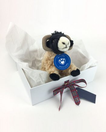 Highland Sheep Scottish Gift