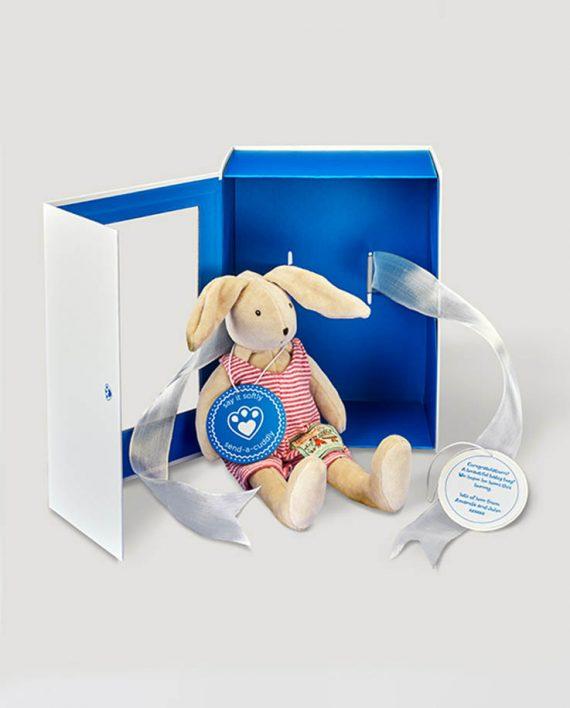 Little Sylvain Rabbit