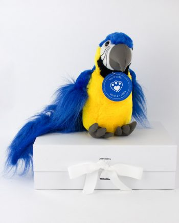 Macaw Soft Toy Gift