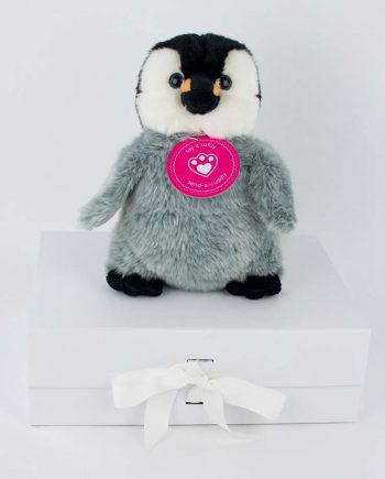 Perfect Penguin Chick