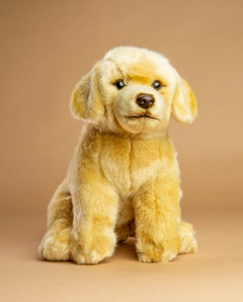 Yellow Labrador dog soft toy gift - Send a Cuddly