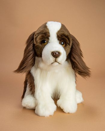 English Springer Spaniel soft toy gift - Send a Cuddly