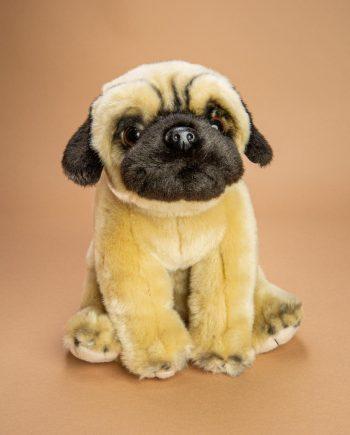 Pug dog soft toy gift - Send a Cuddly