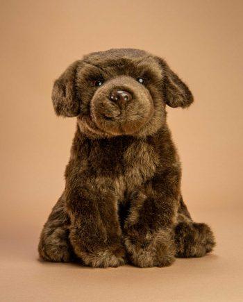 Chocolate Labrador Soft Toy Gift - Send a Cuddly