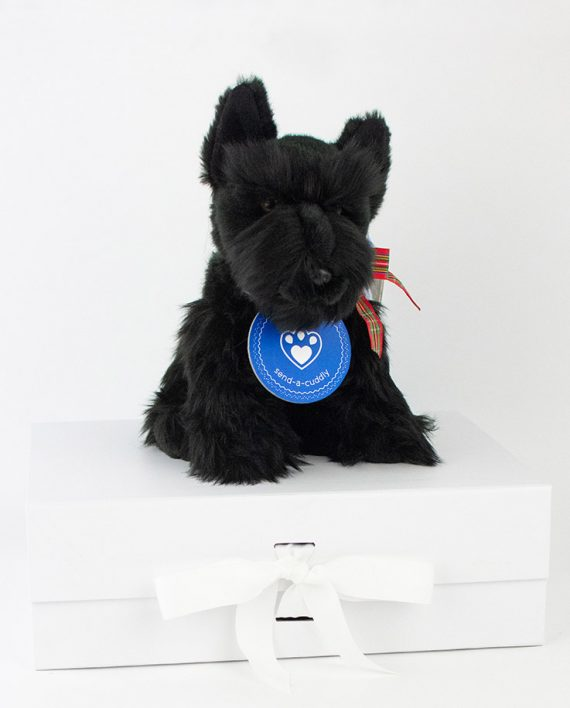 Smart Scottish Terrier dog gift idea