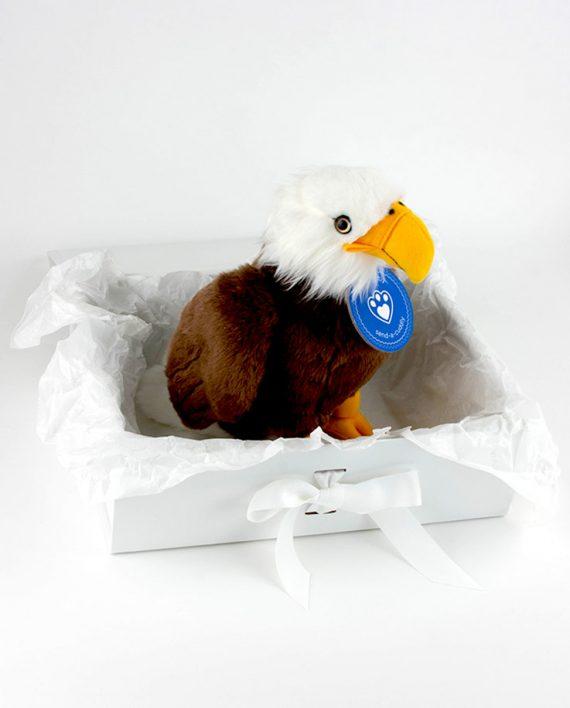 Bald eagle gift