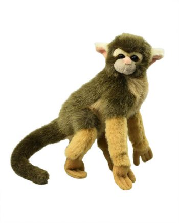 Super Cute Squirrel Monkey gift idea