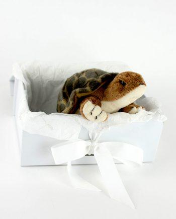 Terrific Tortoise gift idea