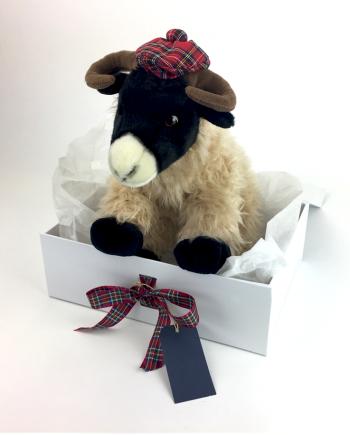 Heathcliff Highland Sheep