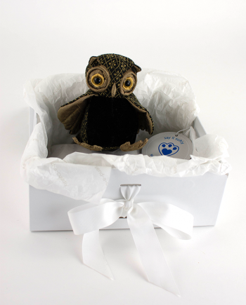 Oliver Wise Owl Paperweight