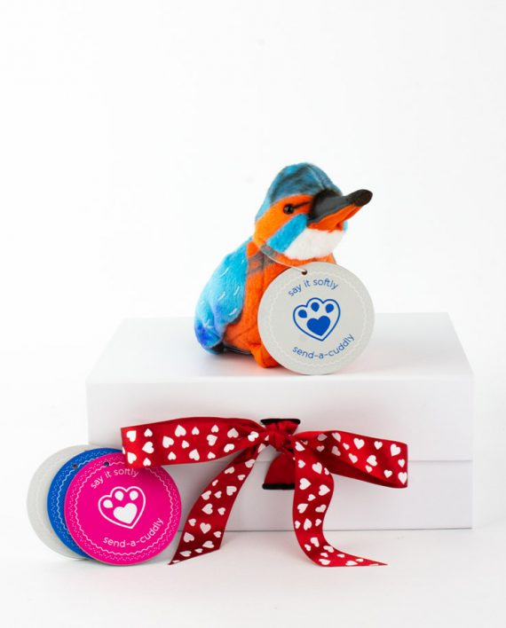 Kingfisher Soft Toy - Send a Cuddly