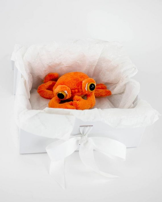 Rocky the Crab soft toy