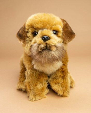 Border Terrier dog soft toy gift - Send a Cuddly
