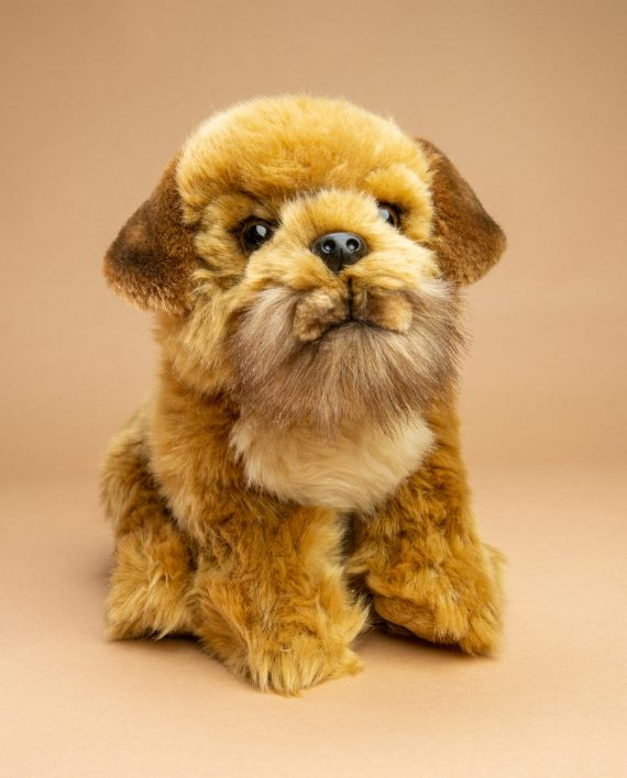 Border Terrier dog soft toy gift - Send a Cuddly