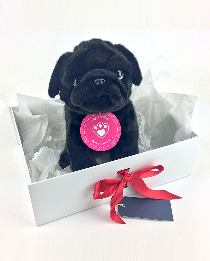 763929ecf16 Black Pug Soft Toy Gift