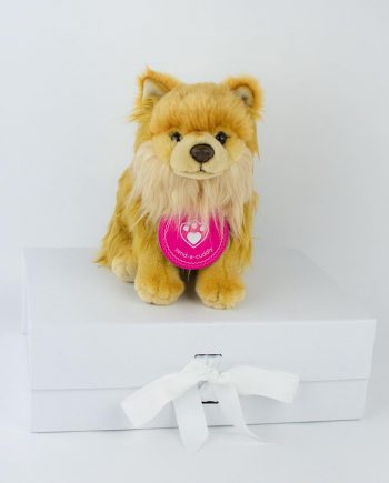 Pomeranian soft toy gift
