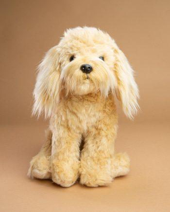 Cream Cockapoo dog soft toy gift - Send a Cuddly