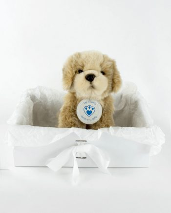 Shih Tzu Teddy Bear Dog Gift