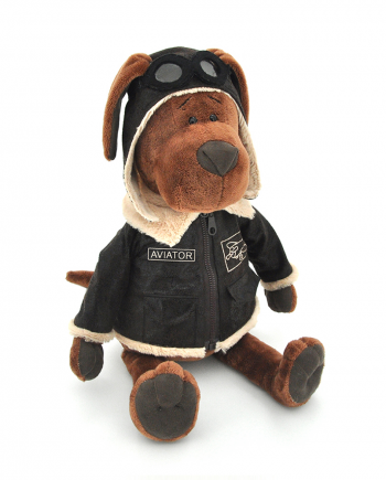 Cookie Aviator Dog
