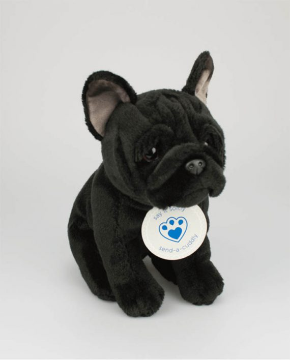 French Bulldog - Black