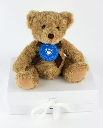 sherwood bear 1