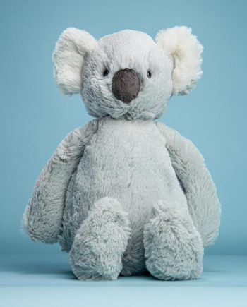 Bashful Koala Soft Toy - Send a Cuddly