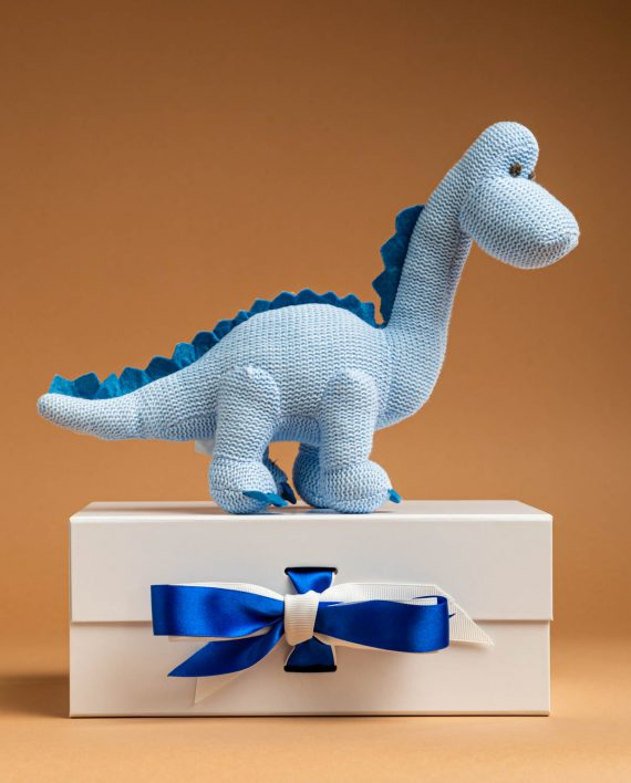 Knitted Diplodocus Baby Rattle Soft Toy Gift - Send a Cuddly