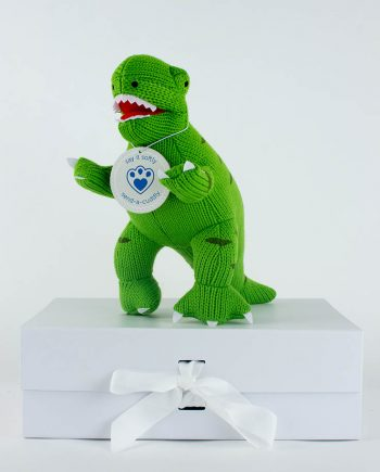 T-rex Soft toy gift