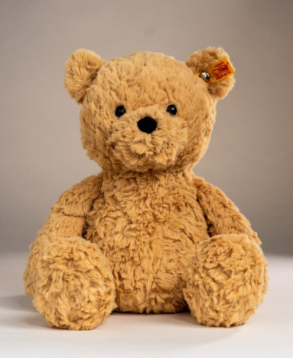 Steiff Jimmy Bear - Send a Cuddly