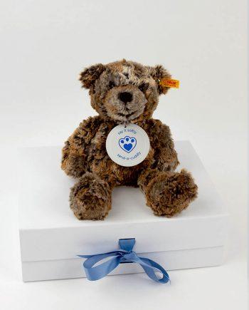 Terry Teddy bear gift