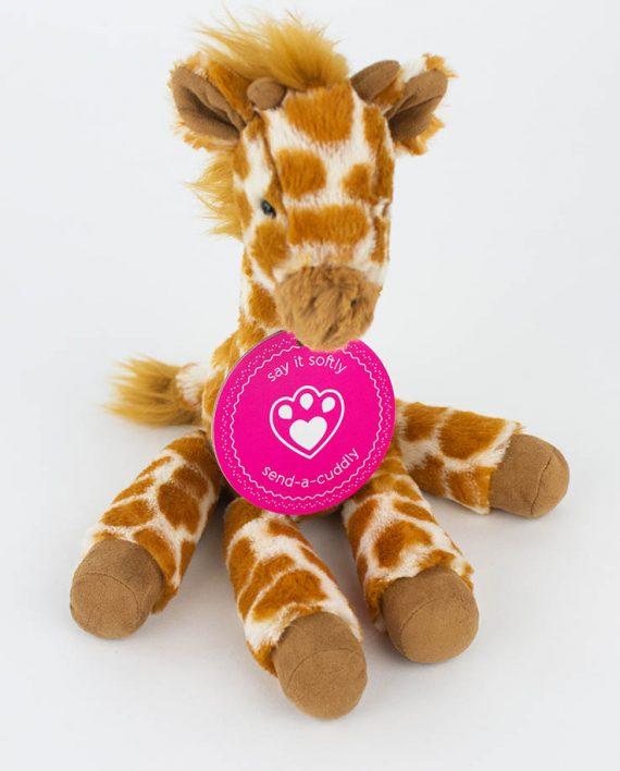 Dillydally Giraffe by Jellycat