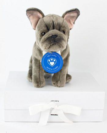 French Bulldog – Blue
