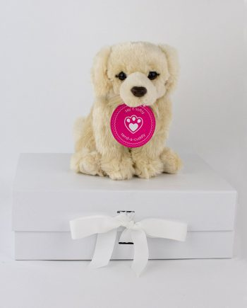 Golden Retriever Soft Toy