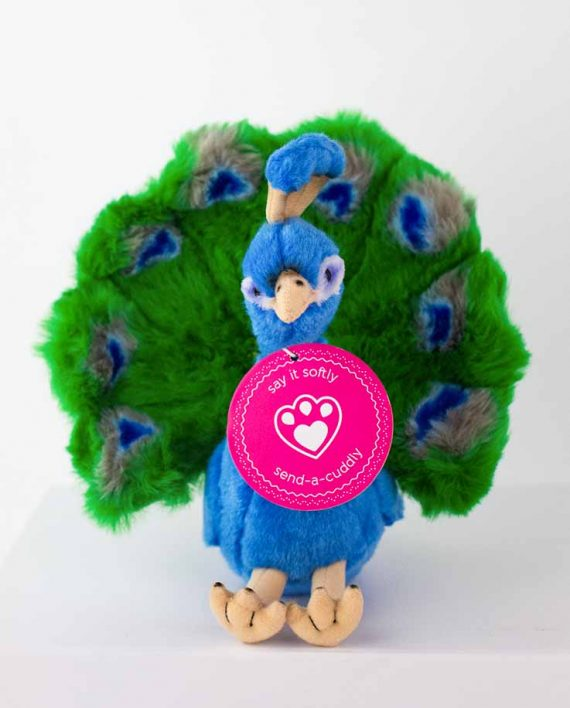 Peacock Soft Toy