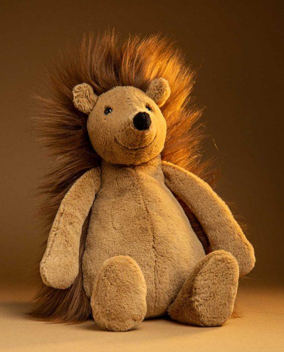Spike Hedgehog Soft Toy Gift - Send a Cuddly