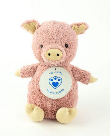 Pig Soft Toy - Send a Cuddly