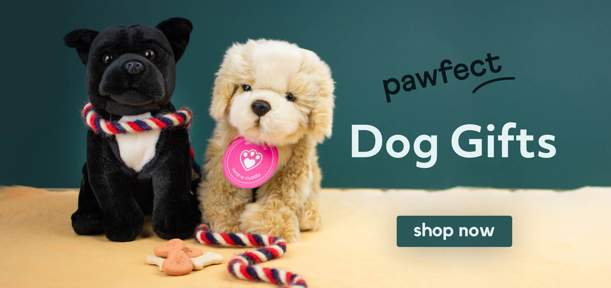 Teddy Bear Gift Present HAPPY BIRTHDAY TRACEY NEW Cute And Cuddly