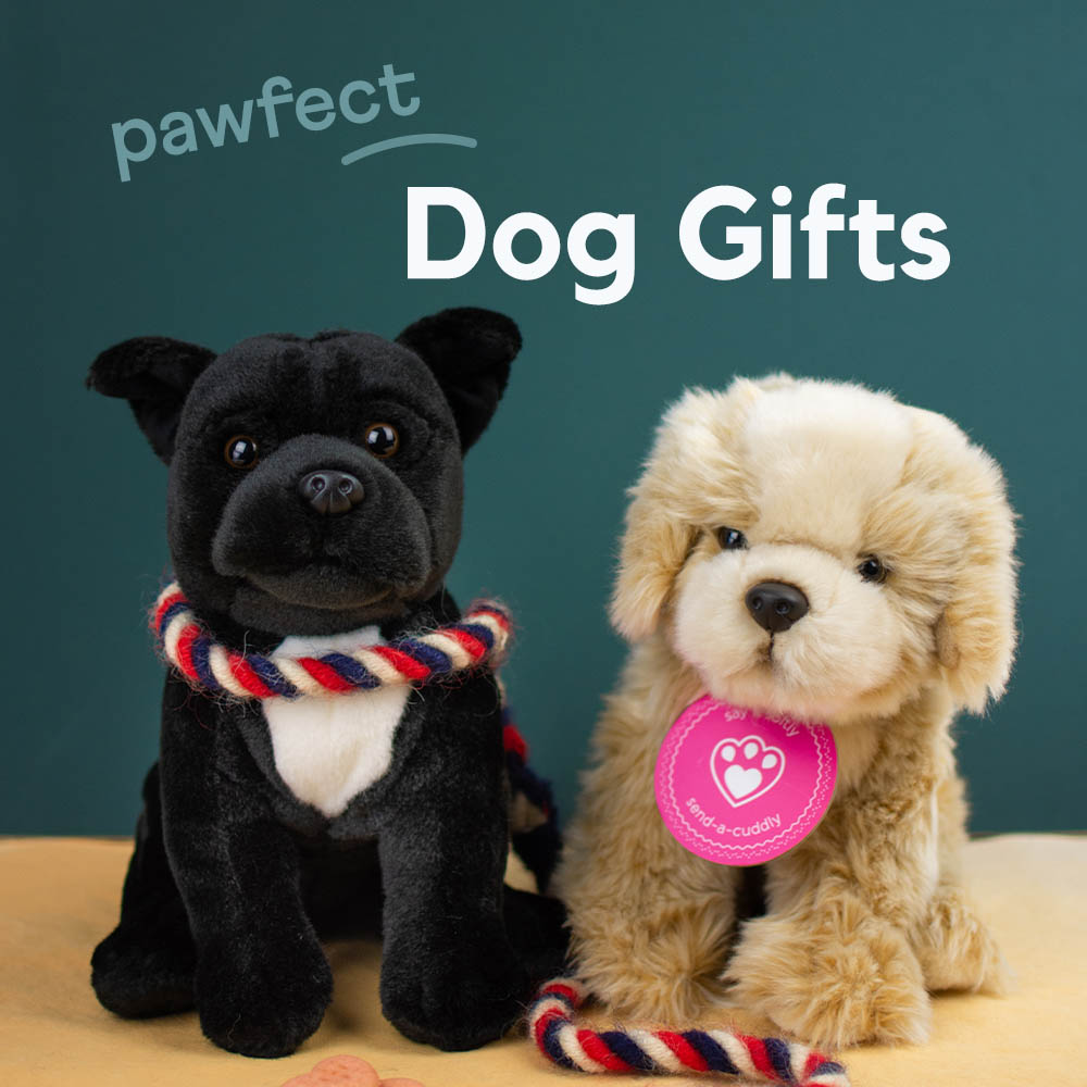 Dog Soft Toy Gifts - Send a Cuddly
