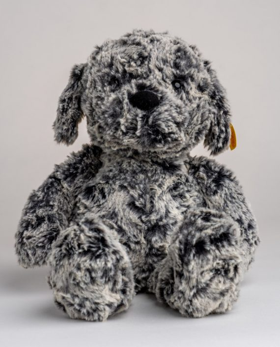 Taffy Dog Soft Toy - Send a Cuddly