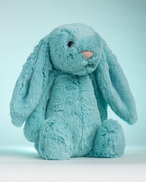 Jellycat Bashful Aqua Bunny - Send a Cuddly