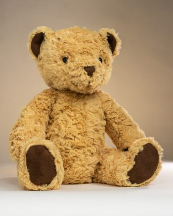 Jellycat Edward Bear - Send a Cuddly