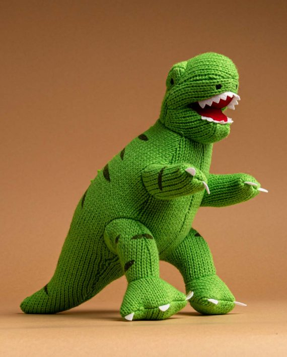 Green Knitted T.rex Soft Toy Gift - Send a Cuddly